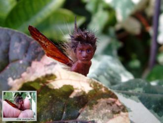 Tiny Fairy SCULPTURE by pixiwillow