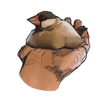 fat birb by Iraik