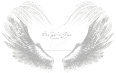 Airbrushed Wings - White 01