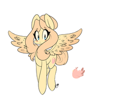 Mlp Oc-CozyFeathers by SilverKnight27