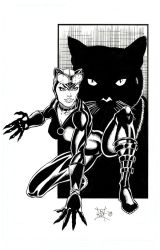 Catwoman by kwill916