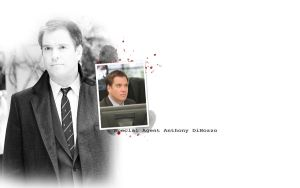 Anthony DiNozzo by Nikky81