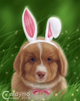 I want to be an Easter bunny.. by Calaymo