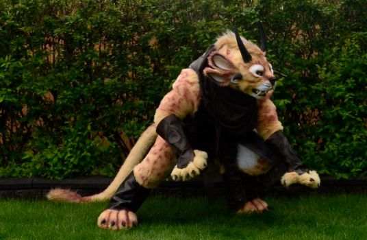 Guild Wars 2 - Charr by temperance