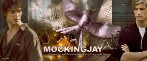 Hunger Games Mockingjay title by Leesa-M
