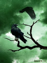 Hugin and Munin by Meredyth