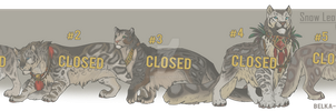 Snow Leopard Adoptables - closed by Belka-1100