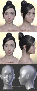 Freebie : Daz3d East Asian female face 1 by HerYun