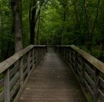 Wooden Bridge by clarson04