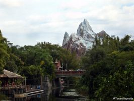 Mt. Everest, Florida by tijir