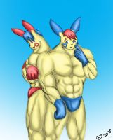 Buff Anthro Plusle and Minun