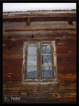 Old window by Shommy