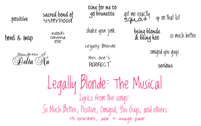 Legally Blonde the Musical by hpnic06