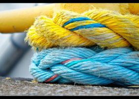 Anchor Hitch Knot by FallesenPhotography