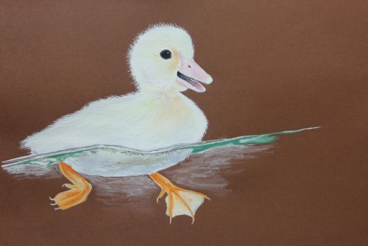 Duckling by Zuzapest