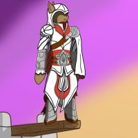 brotherhood outfit by Lucandreus