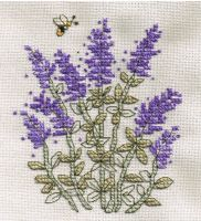 Lavender Cross Stitch by susanjrobinson