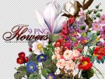 PNG Flowers by Baira