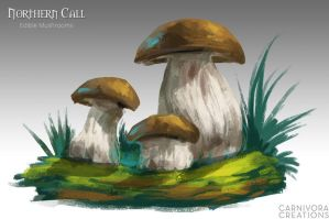 Northern Call: Edible Mushrooms by Chickenbusiness