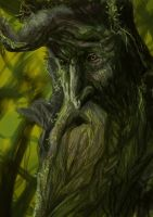 Treebeard by Mental-Lighton