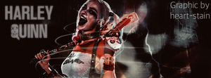 Harley Quinn graphic banner by Owlbirdy