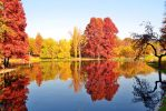 autumn_L04 by victor23081981