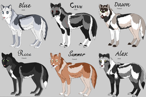 Wolf Characters by Shynight223