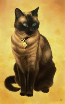 commission - Ozzie the cat by nocturnalMoTH