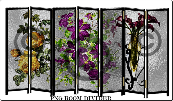 PNG ROOM  DIVIDER by caryR