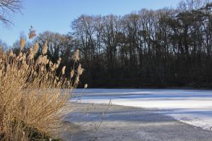 Frozen lake ( 2) by UdoChristmann