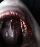 Crack My Teeth by NOTspecific