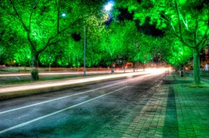 Night: Green Trees HDR by daniellepowell82