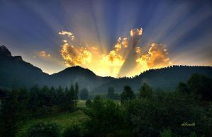 morning glory by hotonpictures