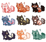 Cat Adopts 5 (2/9 OPEN) (SET PRICE) by AdoptsByUs