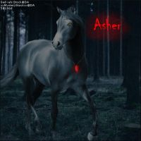 Asher by midholly