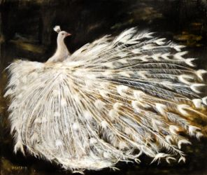 White Peacock - Oil Painting by masaad
