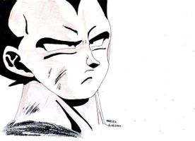Dragonball - Vegeta 5 by parsek76