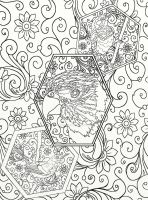 Page 13 of Australian Birds Adult Coloring Book by LorraineKelly