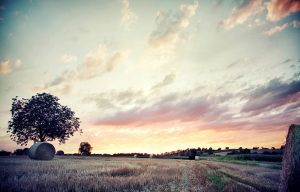 Sunset by jfphotography