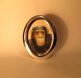 Chimp in a reflective frame by pickled-punk