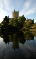 Reflecting Wells by Earth-Hart