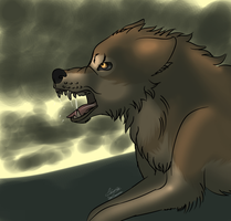 Wolf's rain screen Toboe death by moondaneka
