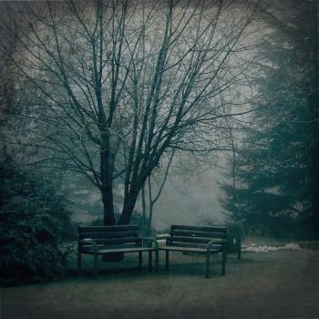 ShARinG LoNeLiNeSS... by DilekGenc