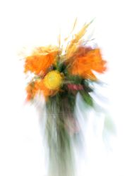 Abstract Floral 4826 by kparks