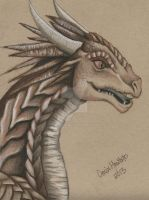 WINGS OF FIRE - SUNNY by DMD-CT