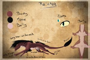 Ra'Chak Ref. Sheet by ScalyFloof
