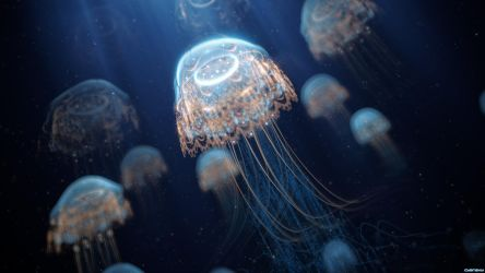 [Fractal] Jellyfish by BabyZhang