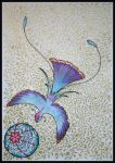 Paradise Bird by Caelitha