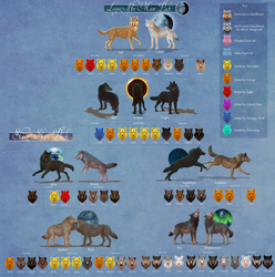 Seri's Wolf Quest  Full Family Tree by TheVerdantHare
