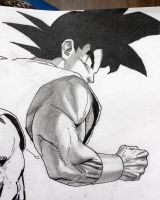 Son Goku - sketch 2 by darkogoku